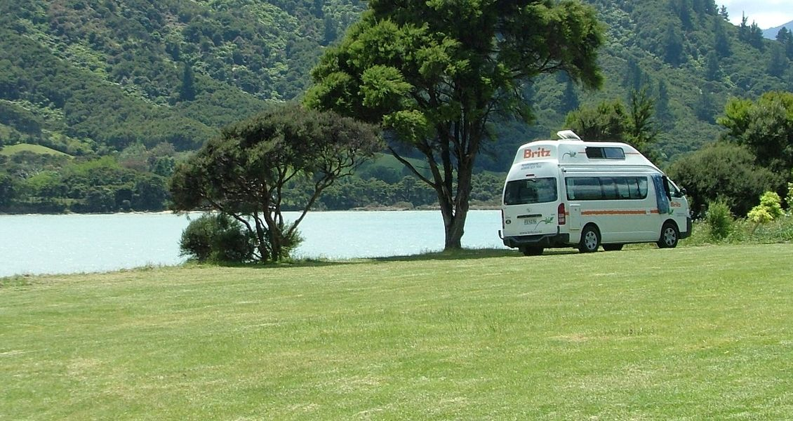 Dog Friendly Camping Picton Nz