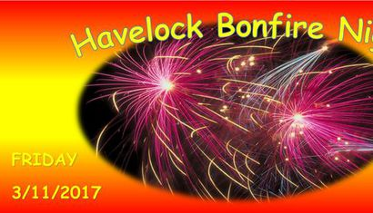 Havelock Bonfire Night image