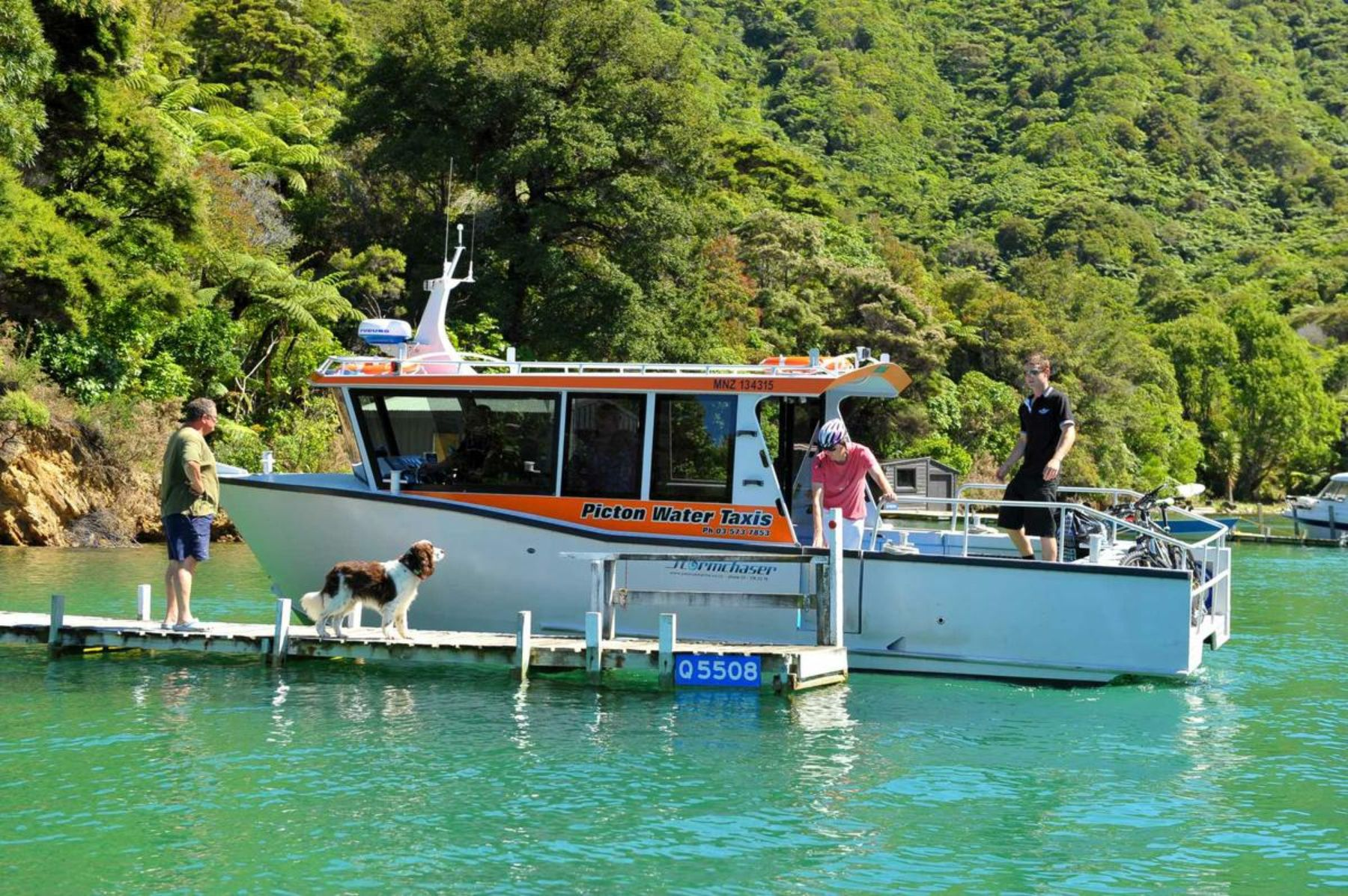picton personals See the best tours for singles in new zealand  new zealand tours for solo / single travellers  , picton, kaikoura and 12 other destinations in new zealand .