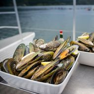 Greenshell Mussel Cruise image