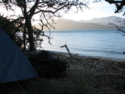Camping on Blumine Island in New Zealand's Marlborough Sounds
