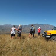 4WD Molesworth Station TagalongTour image