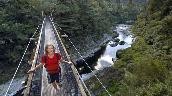 Pelorus Bridge Scenic Reserve Walks