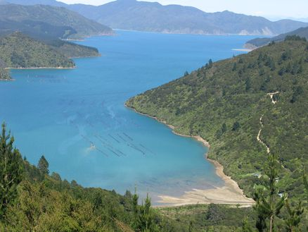 Elaine Bay, Marlborough Sounds