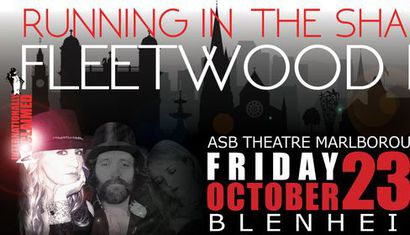 The Fleetwood Mac Show - Running In the Shadows image