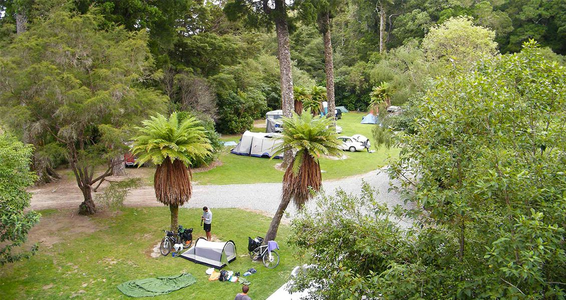 Pelorus Bridge Campground by DOC