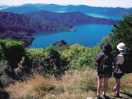 Views of the Marlborough Sounds along the Queen Charlotte Track