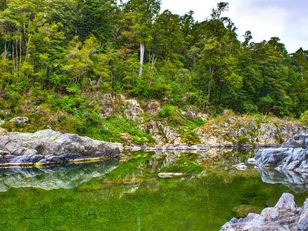 Pelorus River by Phillip Weebly