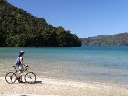 Davies Bay is a popular beach stop along the Queen Charlotte Track in Marlborough, New Zealand