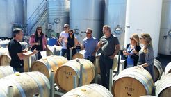 Wine & Beer Tours - Hop 'n Grape Marlborough image