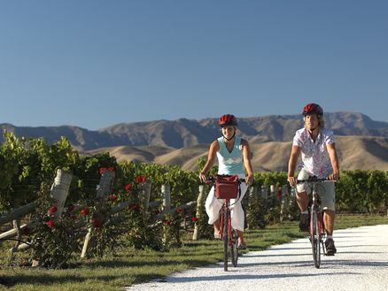 Discover Marlborough's stunning wine trail, biking from cellar door to cellar door