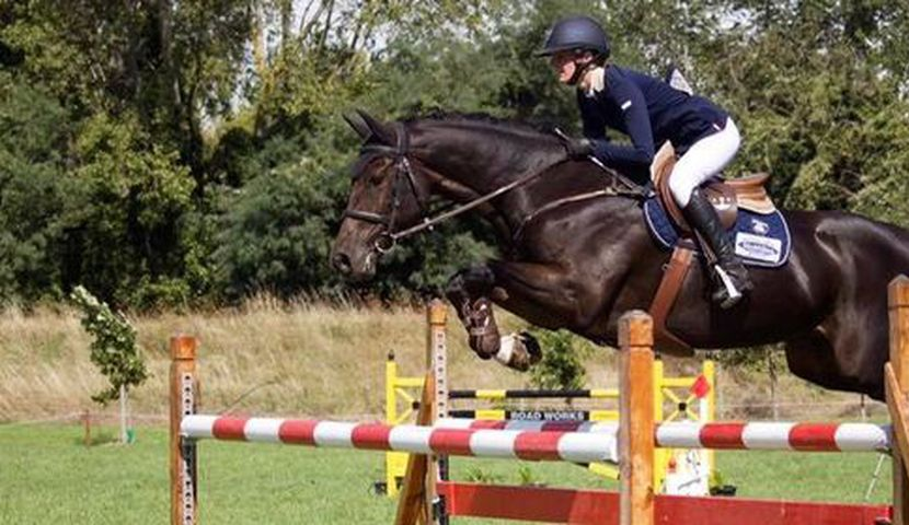 South Island Show Jumping Championships image