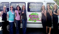 Bubbly Grape Wine Tours image