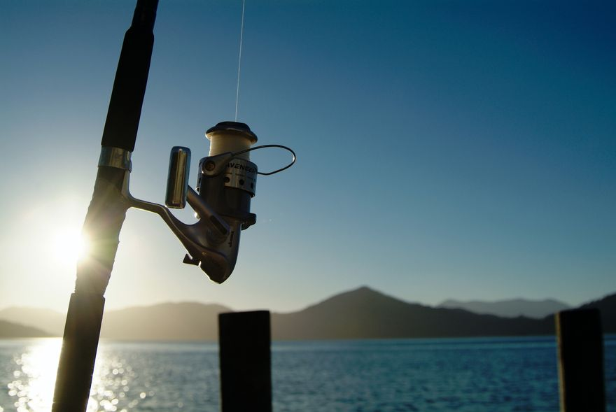 Fishing rules marlborough nz for The rules of go fish