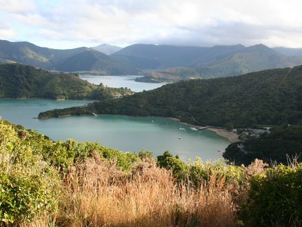 Views of the Marlborough Sounds along the Queen Charlotte Track in New Zealand
