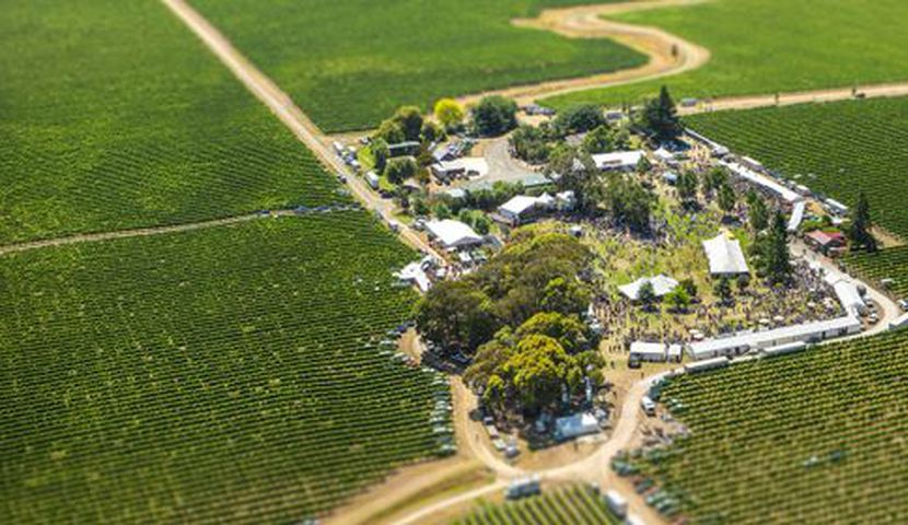 Marlborough Wine and Food Festival image