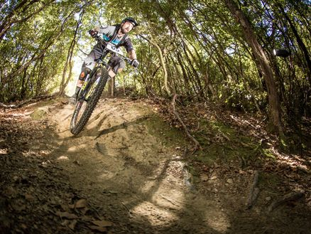 Marlborough's Whites Bay Loop Track is a brilliant downhill mountain bike ride close to Blenheim. Photo: Caleb Smith