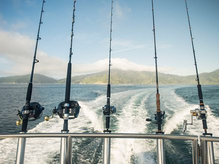 Fishing in the Marlborough Sounds 3