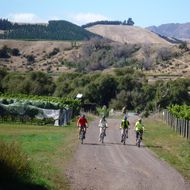 Cycle Molesworth Guided Tour image
