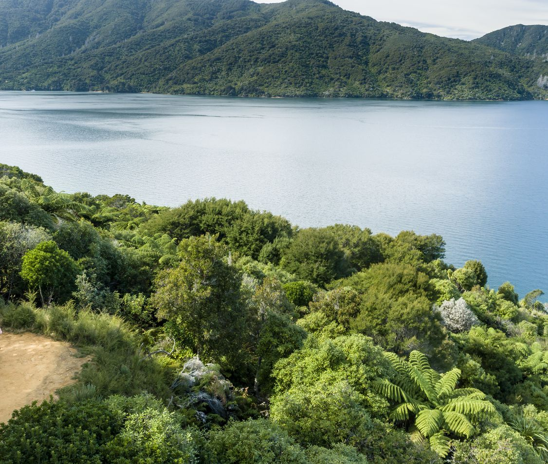 Cycling in the Queen Charlotte Sound