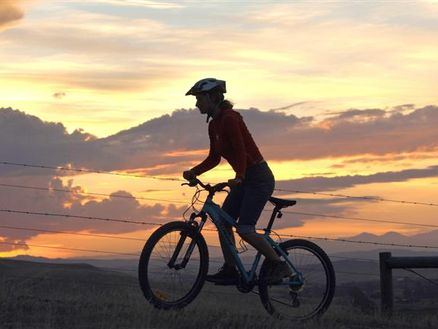 Explore Marlborough's Wither Hills Mountain Bike Park in Blenheim, New Zealand