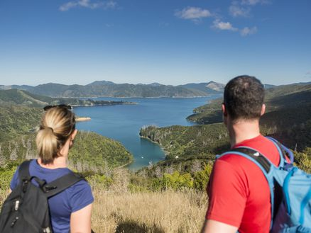Walking along the Queen Charlotte Track in Marlborough, New Zealand