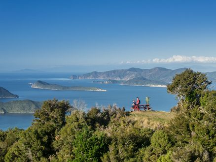 Stunning views of the Marlborough Sounds at Eatwell's Lookout along the Queen Charlotte Track. Copyright Destination Marlborough