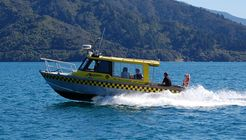 Arrow Water Taxis image