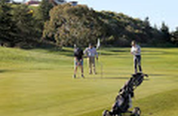 Play Golf NZ image