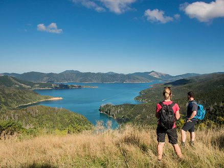 Walking the 70km Queen Charlotte Track