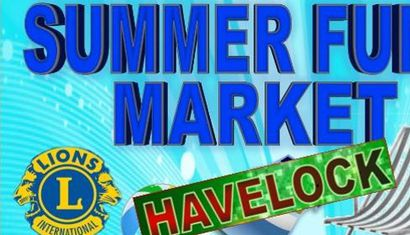 Havelock Lions Summer Fun Market image