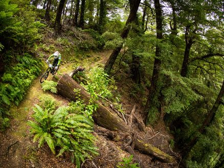 Nydia Track in the Marlborough Sounds is a brilliant single-track ride for experienced riders. Photo: Caleb Smith