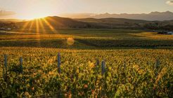 Artisanal Vineyards of New Zealand image