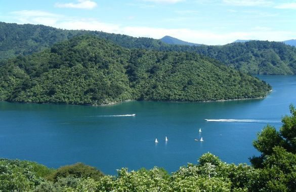 Picton TOP 10 Holiday Park image