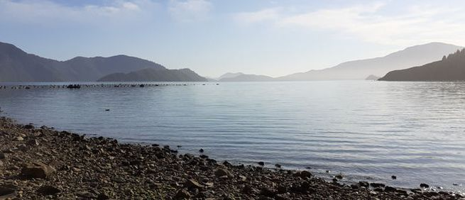 Exclusive Day Excursions in the Marlborough Sounds image