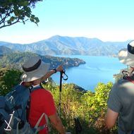 4 Day Classic Unguided Walk - Queen Charlotte Track image