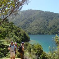 Marlborough Sounds Adventure Co image
