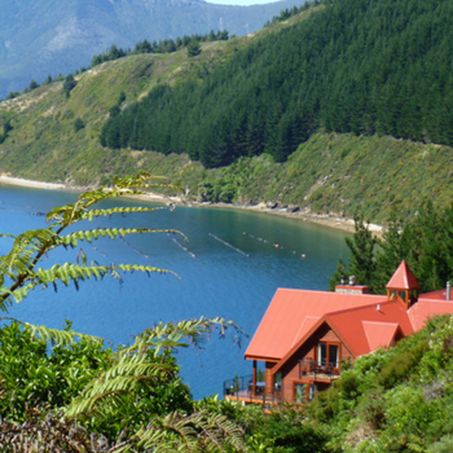 Marlborough Sounds Day Excursion: Boat, Hike, Eat! image