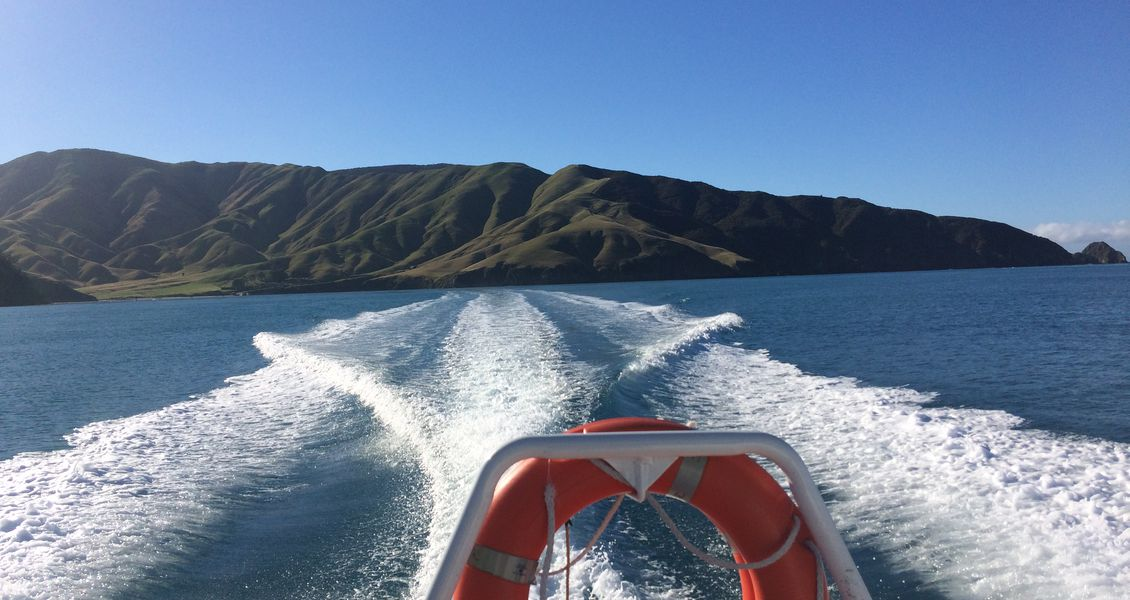 Boating in the Marlborough Sounds