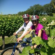 Explore Marlborough Biking Wine Tours image