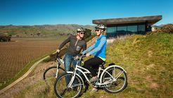 Brancott Estate Vineyard Cycle Tour  image