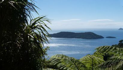 Motuara Island Bird Sanctuary Cruise image