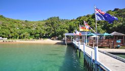 Day in the Sounds - Punga Cove Resort image