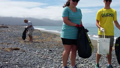 World Ocean Day Beach Clean-Up: Rarangi image