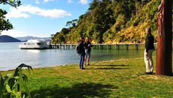 Torea Bay to Punga Cove Walk image