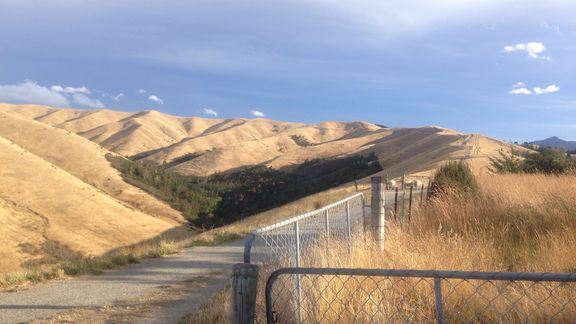 Wither Hills Mountain Bike Park