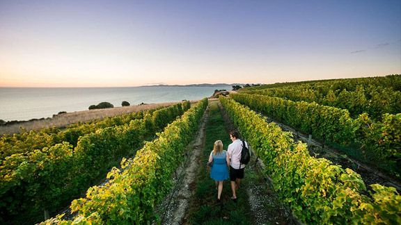 Luxury Retreats & Wine Tours